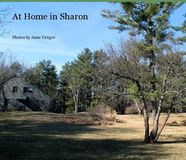 At Home in Sharon