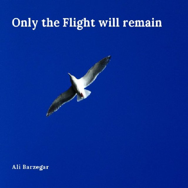 Only the Flight will remain