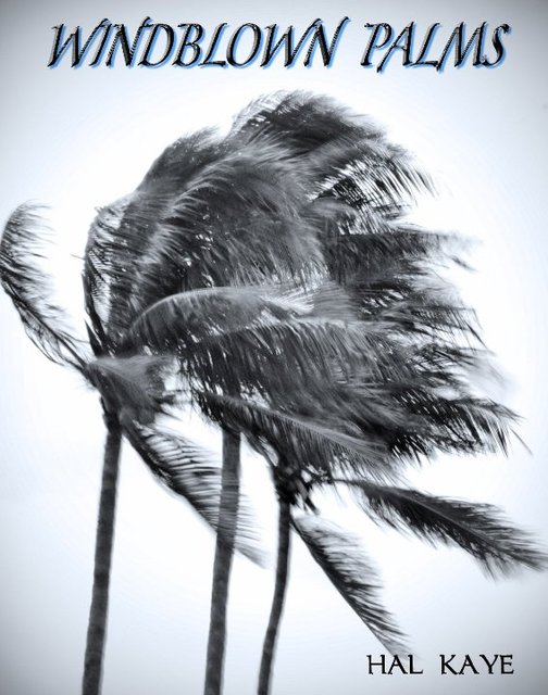 Windblown Palms