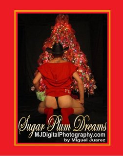 Sugar Plum Dreams