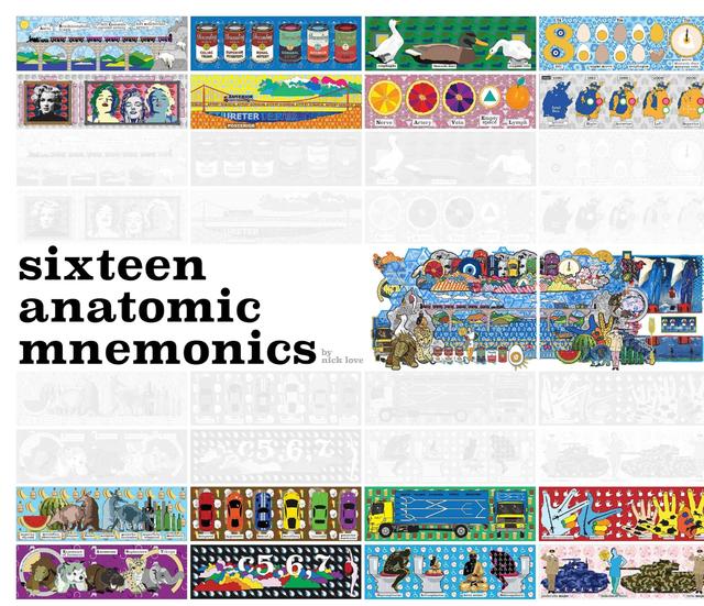 sixteen anatomic mnemonics