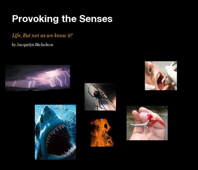 Provoking the Senses