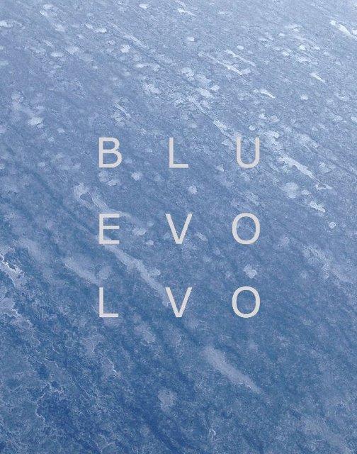 Blu Evo Lvo