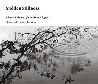 Sudden Stillness