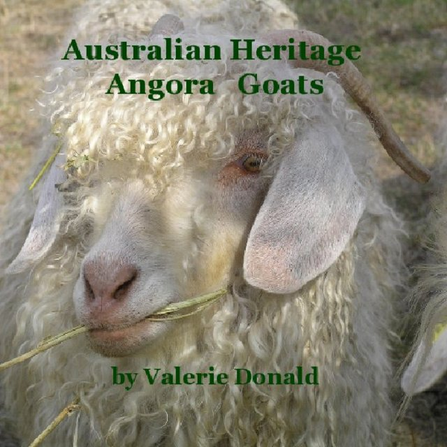 Australian Heritage Angora Goats by Valerie Donald