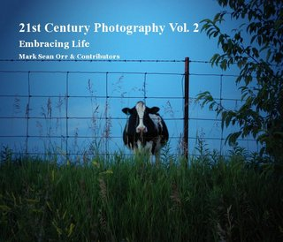 21st Century Photography Vol. 2