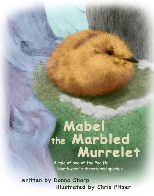 Mabel the Marbled Murrelet