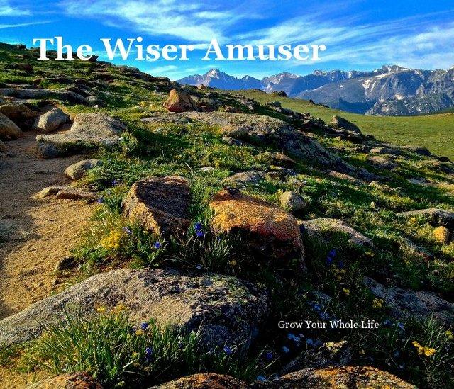 The Wiser Amuser