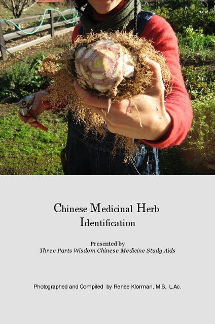 Chinese Medicinal Herb Identification