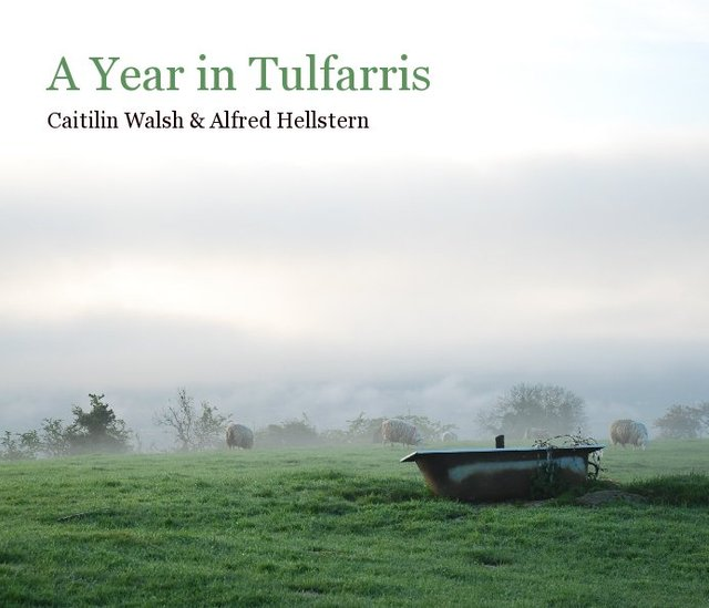 A Year in Tulfarris