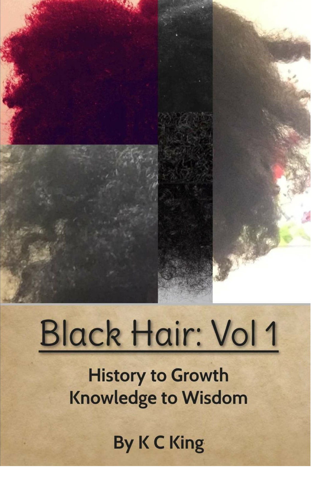 Black Hair: (Vol 1) History to Growth. Knowledge to Wisdom.