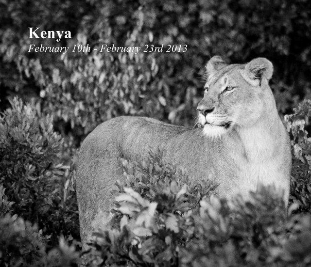 Kenya February 10th - February 23rd 2013