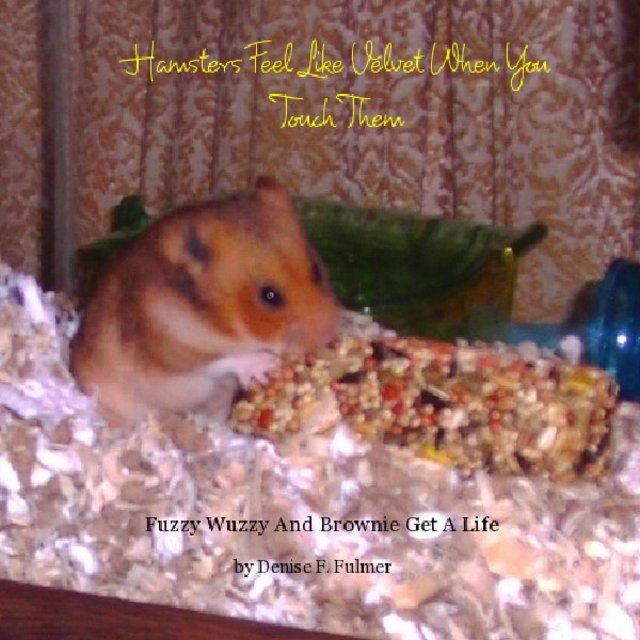 Hamsters Feel Like Velvet When You Touch Them