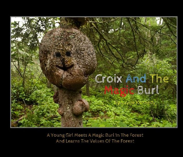 Croix And The Magic Burl