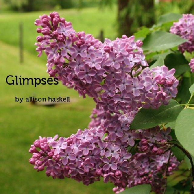 Various Glimpses Volume 2