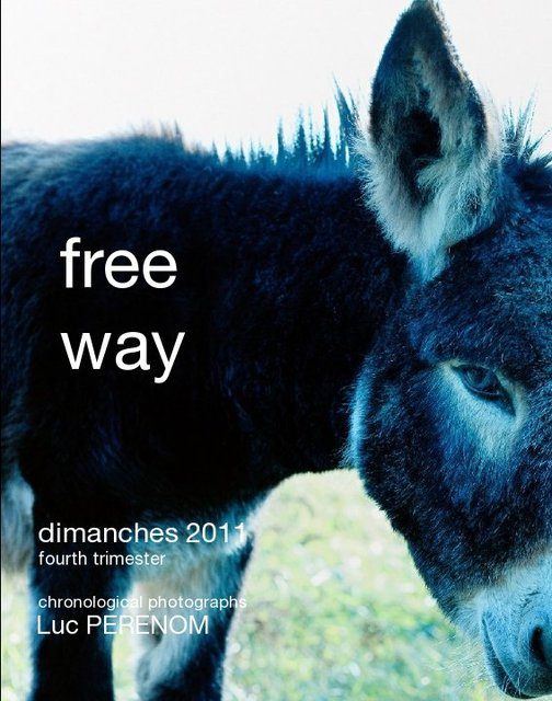 free way, dimanches 2011 fourth trimester