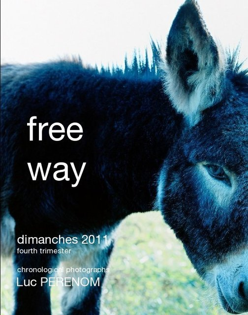 free way, dimanches 2011, fourth trimester