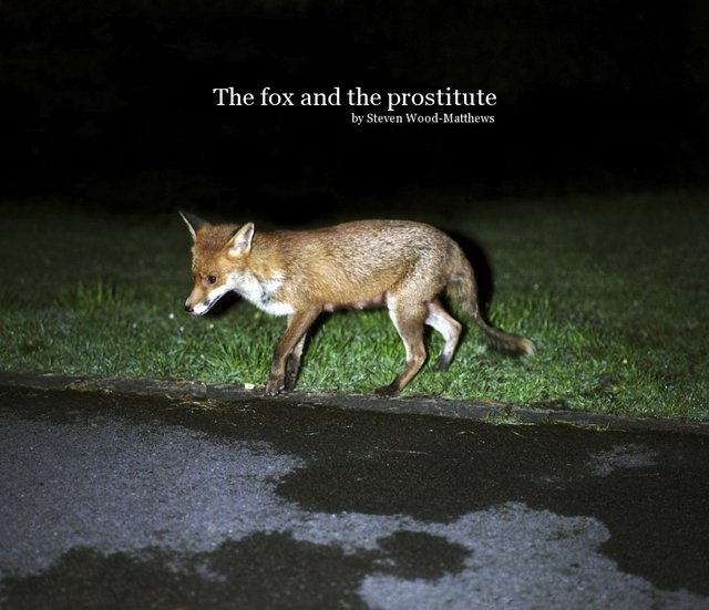 The fox and the prostitute by Steven Wood-Matthews