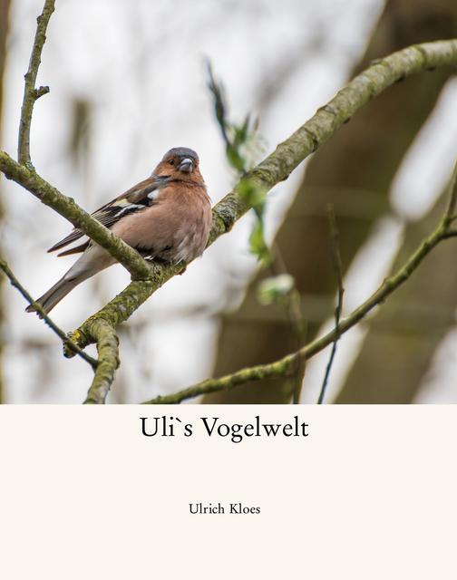 Uli`s Vogelwelt