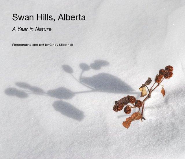 Swan Hills, Alberta