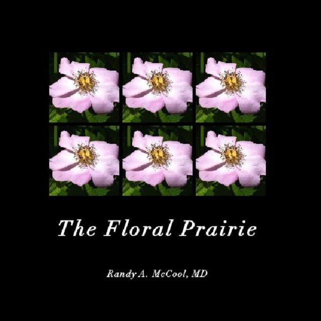 The Floral Prairie