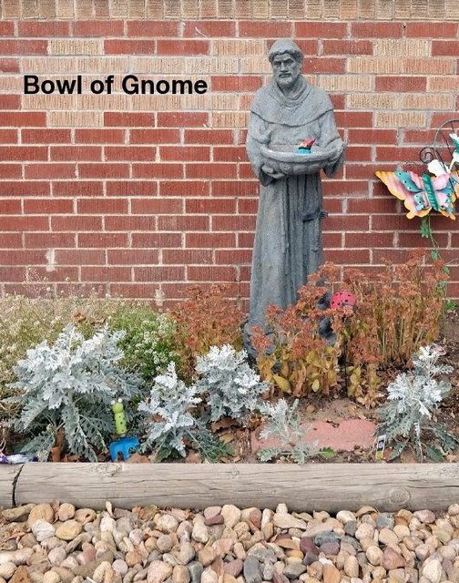 Bowl of Gnome
