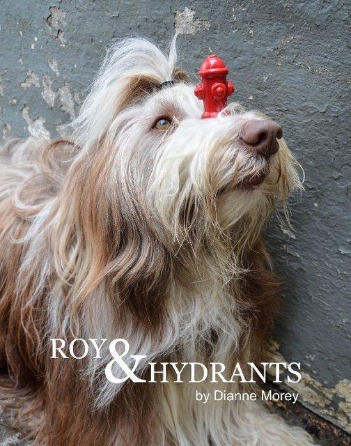 ROY & HYDRANTS