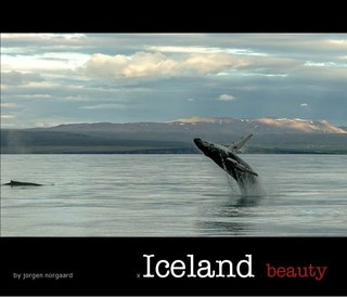 Iceland beauty