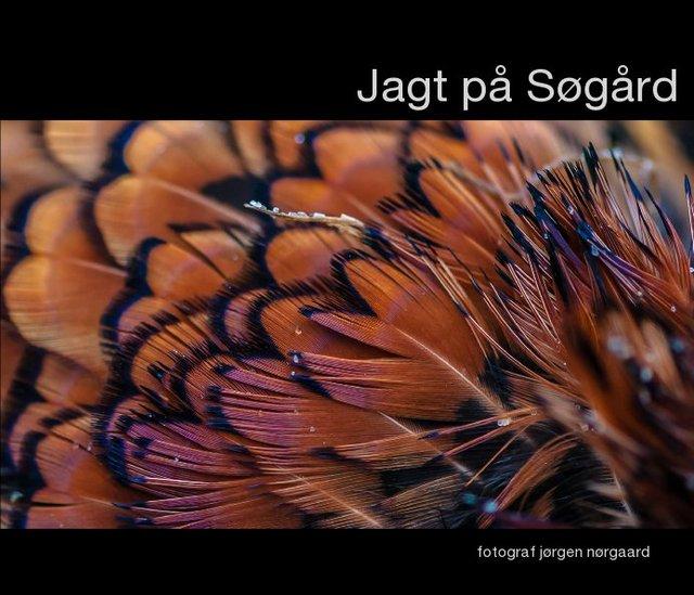 Jagt på Søgård
