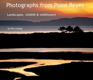 Photographs from Point Reyes