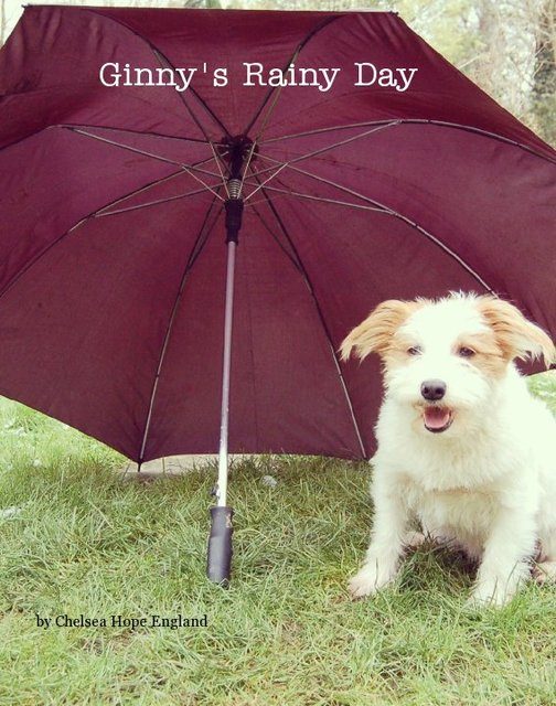 Ginny&#x27;s Rainy Day