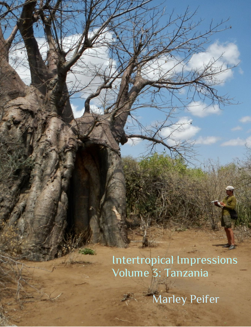 Intertropical Impressions