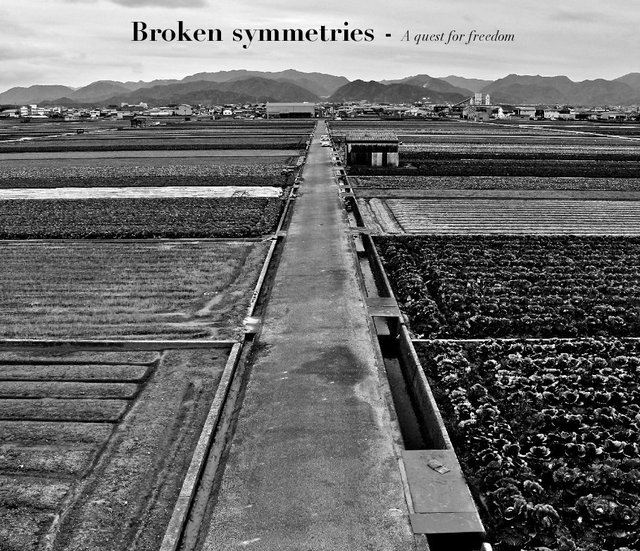 Broken symmetries - A quest for freedom