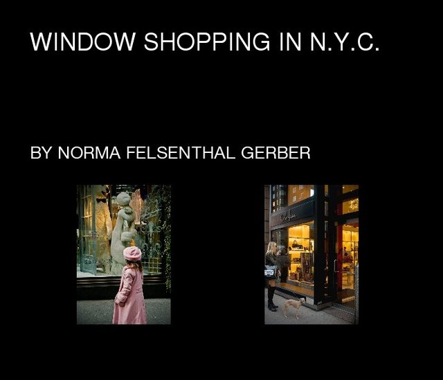 Window Shopping In N.Y.C.