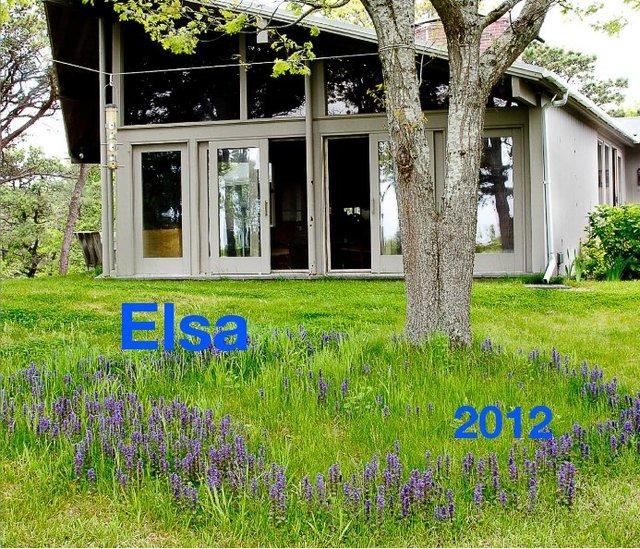 Elsa 2012