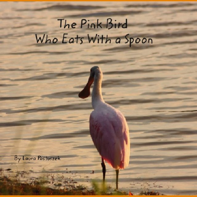 The Pink  Bird          Who Eats With a Spoon