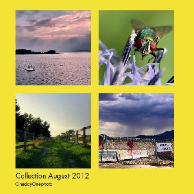 Collection August 2012