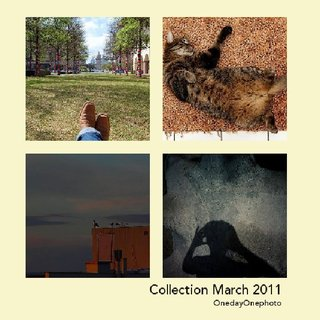 Collection March 2011