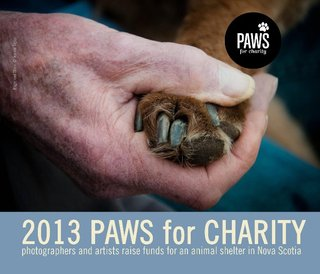 2013 Paws For Charity
