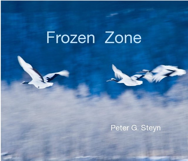 Frozen Zone