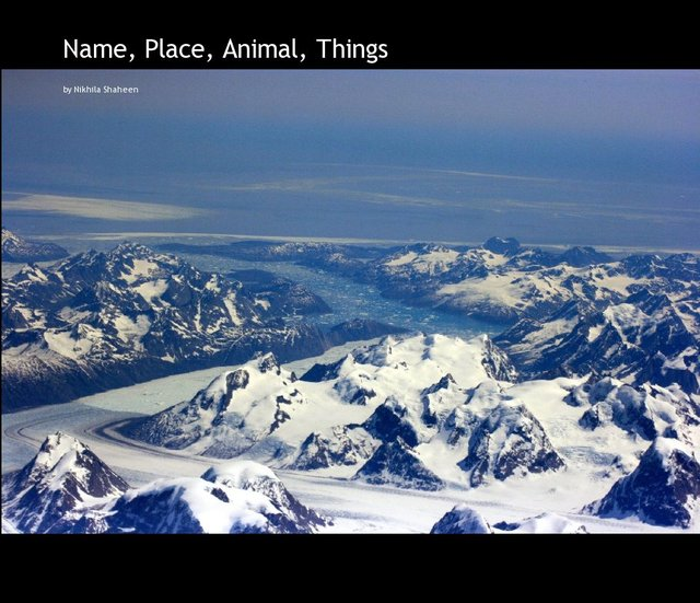 Name, Place, Animal, Things
