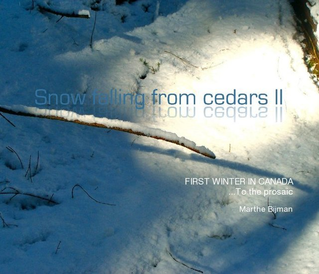 Snow Falling from Cedars II