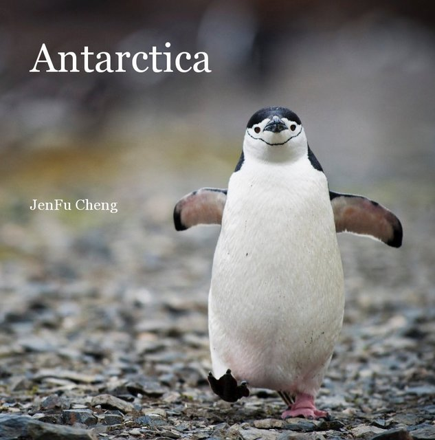 Antarctica-Large Format