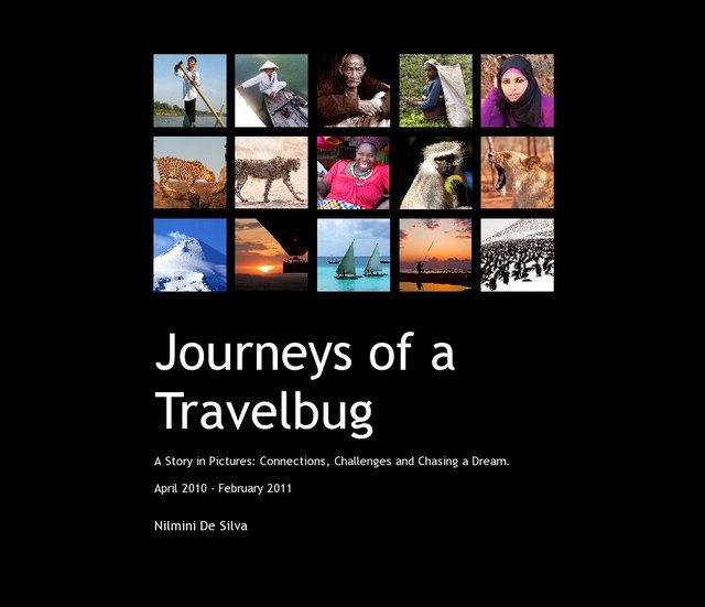 Journeys of a Travelbug
