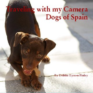 Traveling with my Camera Dogs of Spain