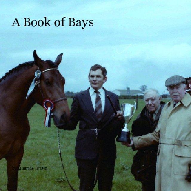 A Book of Bays