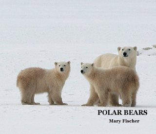 POLAR BEARS Mary Fischer
