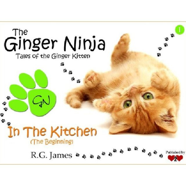 The Ginger Ninja - In The kitchen