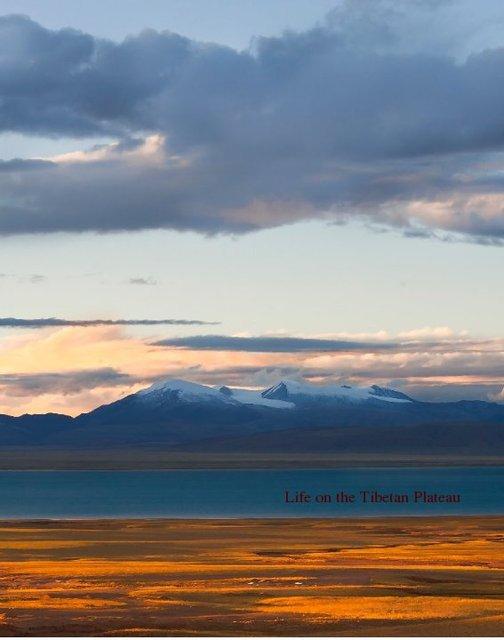 Life on the Tibetan Plateau