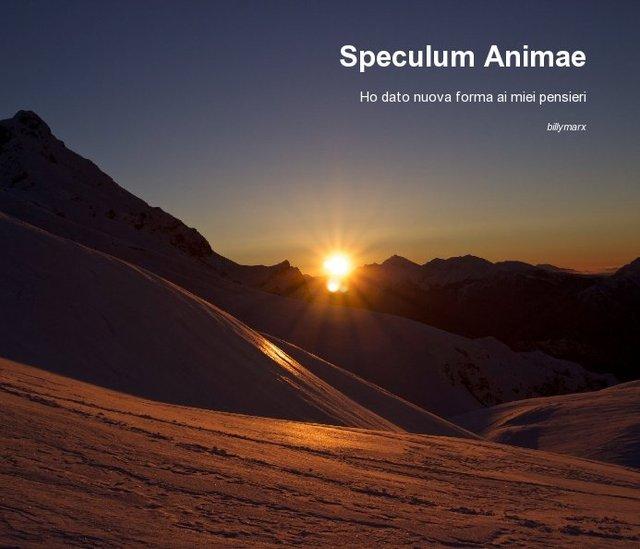 Speculum Animae